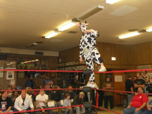 "Ladies and gentleman I give you …POO Doo the Cow(Photo Credit Brian ""Flair"" Kelley)"